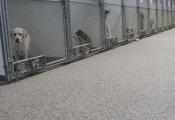 epoxy floors san diego